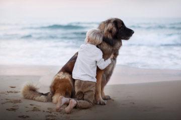 Si una mujer tuvo contacto con un gato o un perro durante el embarazo, es recomendable que mantenga la mascota luego de tener al bebé