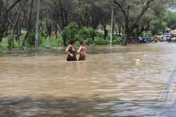 Las lluvias ya dañaron 33.000 hectáreas de cultivos agrícolas en 29 municipios del territorio boliviano