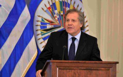 Doblellave-Almagro aseveró que Falcón es un instrumento del Gobierno
