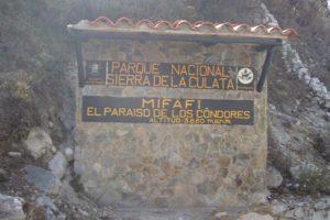 doble llave - La organización cubrió gastos de logística donde participaron más de 200 atletas en los 38 kilómetros de Mifafi-La Culata estado Mérida