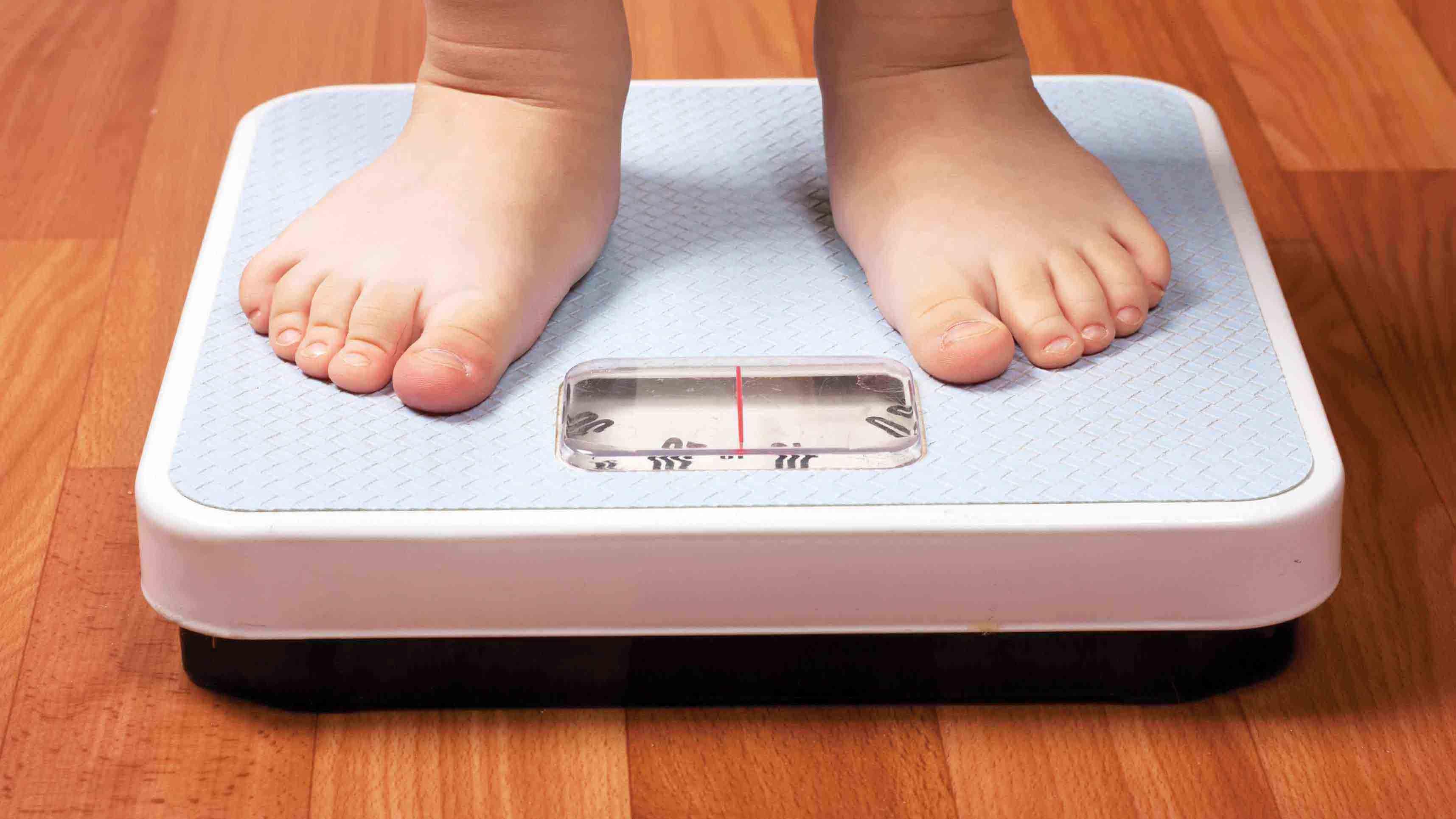 Doble Llave - Bacterias estarían vinculadas a la obesidad infantil
