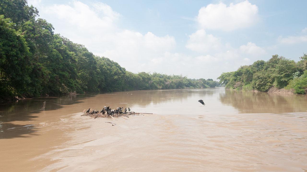 El desbordamiento del río Cauca el pasado 12 de mayo dejó un total de 600 personas afectadas
