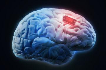 Un grupo de científicos ha desarrollado componentes destinados a una interfaz entre el sistema nervioso y una máquina