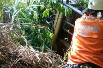Accidente de tránsito deja un persona muerta en Trujillo