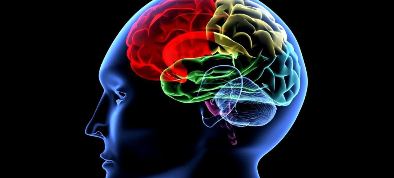 Desarrollan casco que manipula las ondas cerebrales