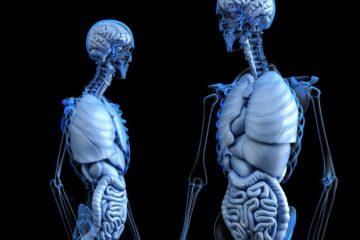 Algunos tips para determinar problemas en los huesos