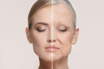 Un gen desempeña un papel importante en el envejecimiento humano
