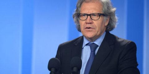 El secretario de la OEA pidió durante su intervención en la sesión extraordinaria del organismo garantizar los derechosde losinmigrantes