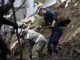 Según el reporte de la Unidad de Gestión del Riesgo, el deslizamiento sepultó dos viviendas donde habitaban 11 personas
