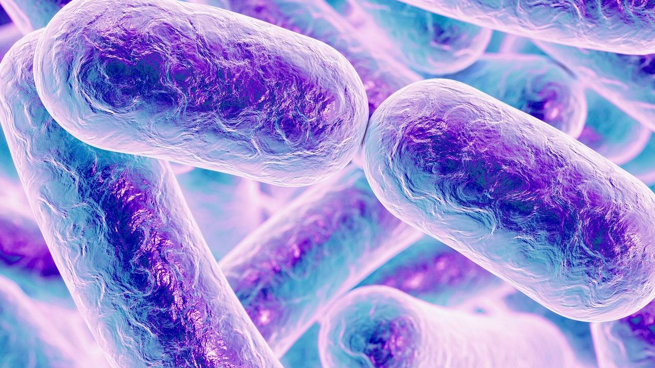 Según los investigadores los microorganismos están adquiriendo material genético no común