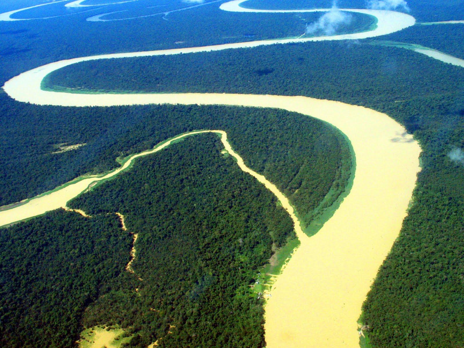 Científicos advierten que Hidrovía Amazónica afectará ecosistemas