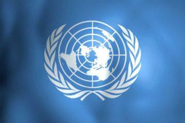 LaOficina del Alto Comisionado de las Naciones Unidas para los Derechos Humanos manifestó que desea conocer de cerca la situación adentrándose a ciertos lugares
