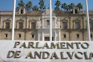 Las organizaciones políticas Vox, Partido Popular y Ciudadanos ponen en jaque al Gobierno del socialista Pedro Sánchez