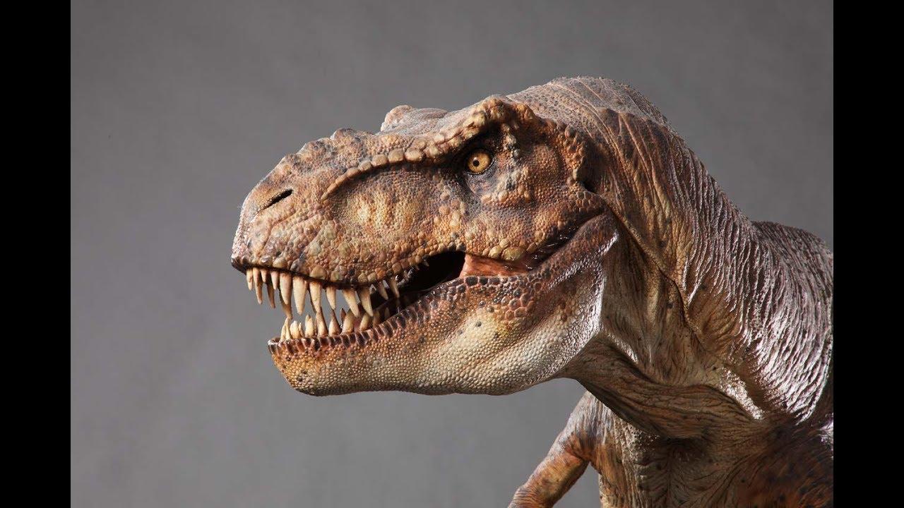 """Los expertos decidieron nombrar al espécimen como """"Moros intrepidus"""""""