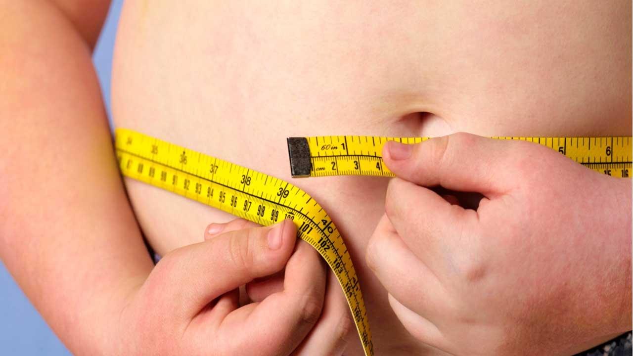 Los investigadores israelitas descubrieron que ciertas células pueden quemar grasa