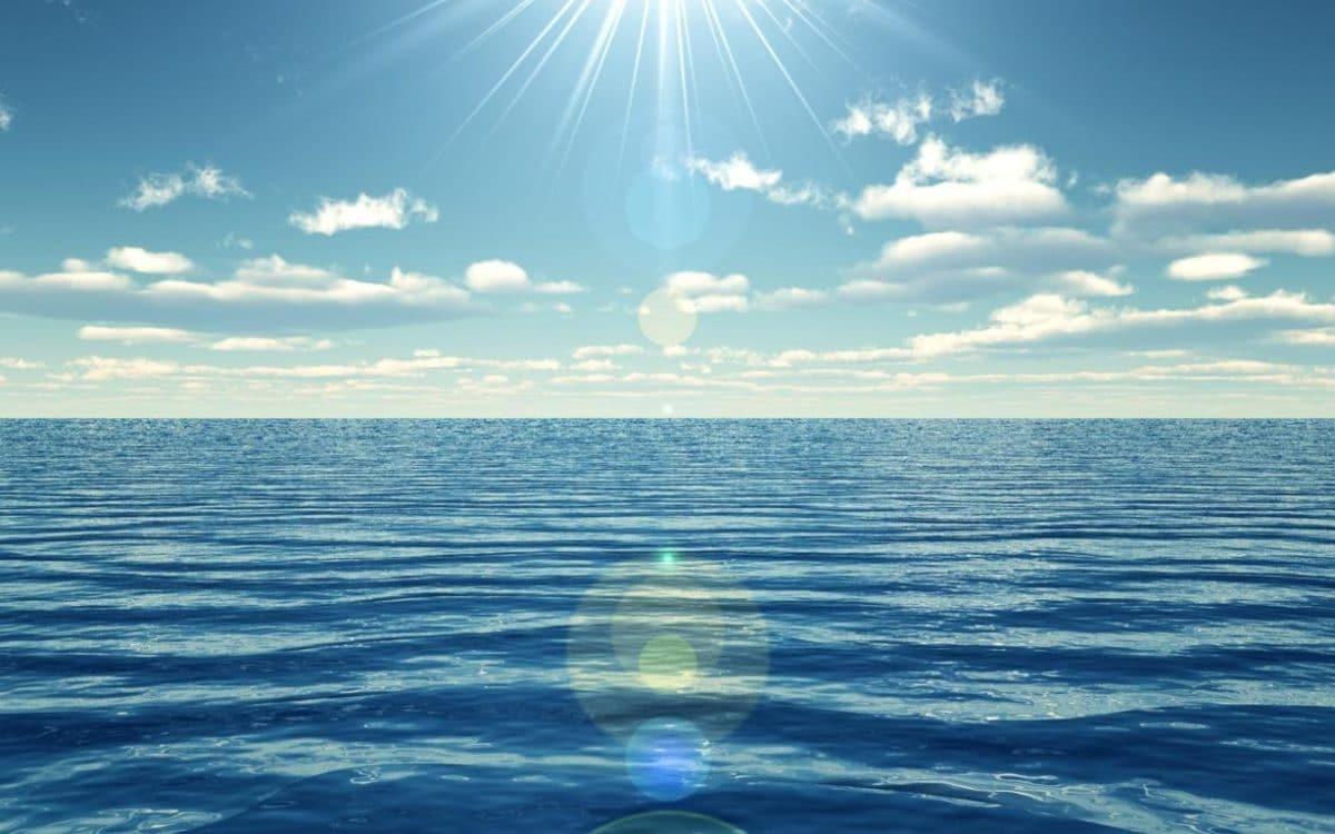 El proyecto implementará múltiples opsinas de varilla para que los peces absorban la luz