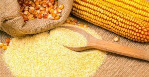 Advierten que harinas deben ser mezcladas con proteínas