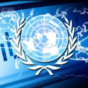 ONU aspira a propagar el internet en los próximos años