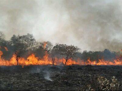 Un total de 1.718 efectivos se encuentran desplegados en diferentes áreas para contener las llamas
