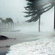 Resaltando que esta es la depresión tropical número 31 en lo que va de año