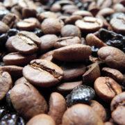 Caficultores advierten sobre venta ilegal de café insalubre en el país