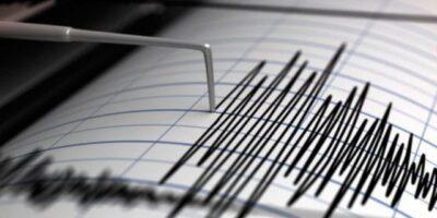 Reportaron un sismo de magnitud 6,4 en Chile y Argentina