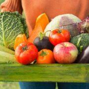 Conoce algunas diferencias entre los alimentos orgánicos y los normales