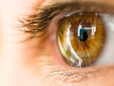 IVIC avanza en la regeneración ocular con células madre