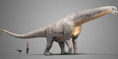 | Descubren el fósil prehistórico más antiguo del mundo en Argentina