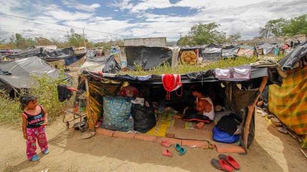 FAO ayudará a las familias vulnerables de Venezuela