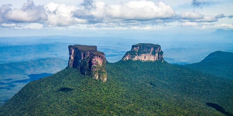 ONG advierte que 700 hectáreas del Parque Nacional Canaima fueron destruidas