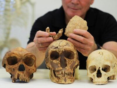 Hallan en Israel una nueva especie de hombre prehistórico