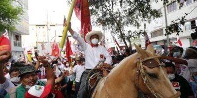 Alfredo Portillo: En Perú renace la Flor de Retama
