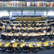 FAO insiste en la inclusión para evitar futuras enfermedades