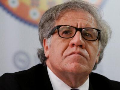 Almagro pedirá exhumación independiente de Baduel ante la ONU