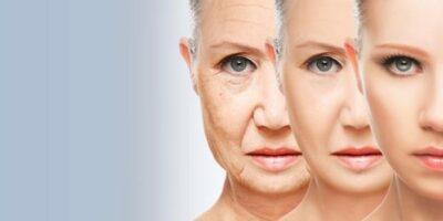 Investigadores desarrollan anticuerpos que frenan el envejecimiento