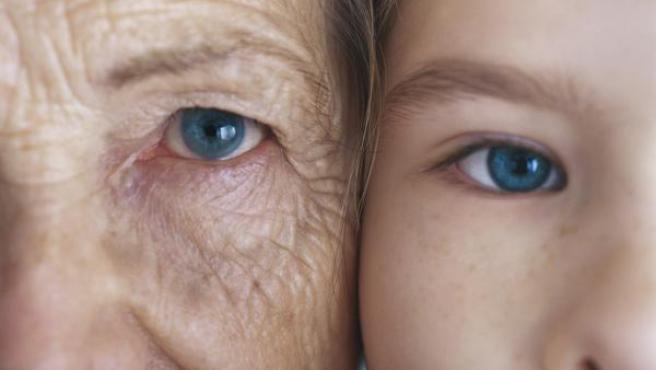 """Científico de Harvard considera que la vejez es una """"enfermedad curable"""""""