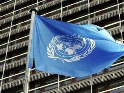 CNE solicitó despliegue de panel de expertos de la ONU